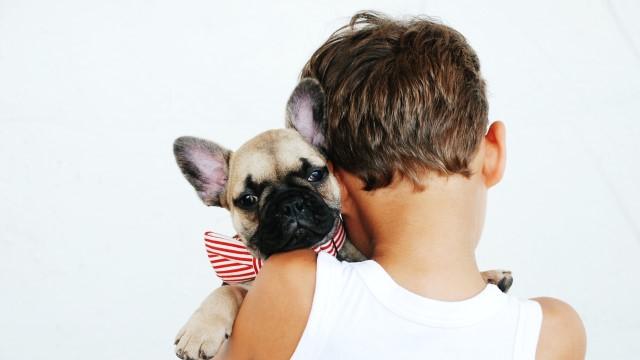 7 Best Dog Breeds for Kids
