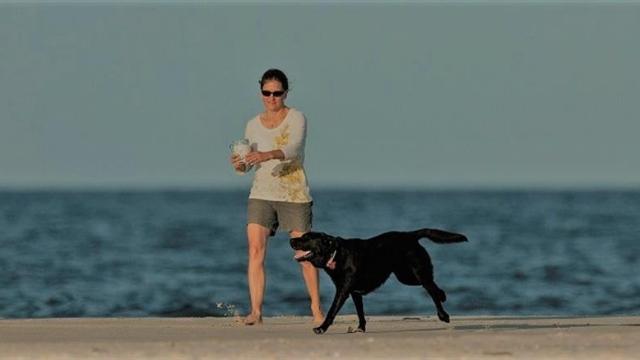 bald head island dog friendly beaches