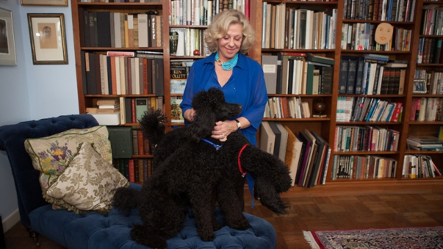 erica jong dog quotes