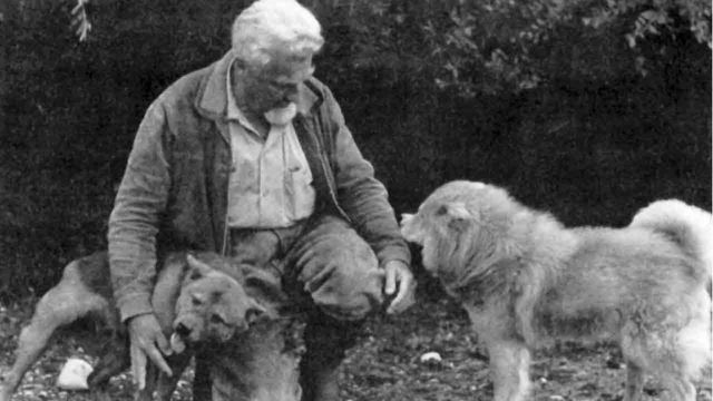 konrad lorenz dog quotes
