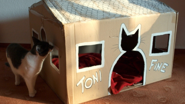 cardboard house diy cat toys