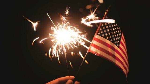 4th of July Pet Safety Tips: How To Keep Them Safe