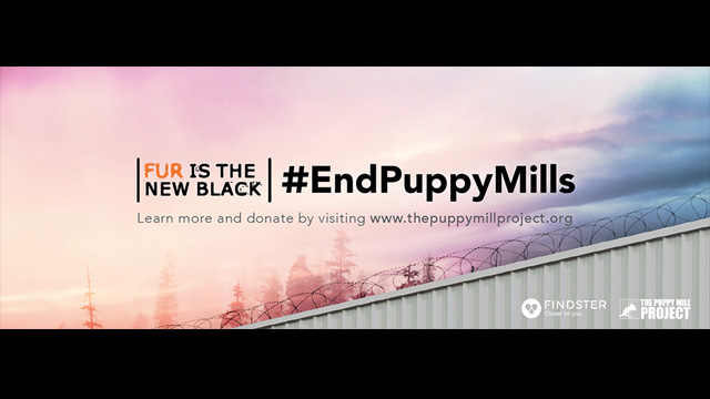 Help Us End Puppy Mills!
