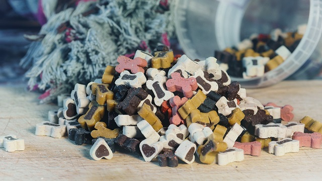 nutrition tips for pets - dog treats